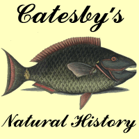 logo for Mark Catesby's Natural History Of Carolina, Florida and the Bahama Islands