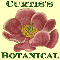 logo for Curtis's Botanical Magazine section