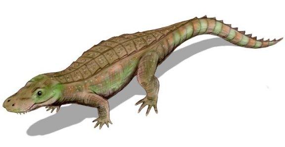 Anatosuchus minor - Prehistoric Animals