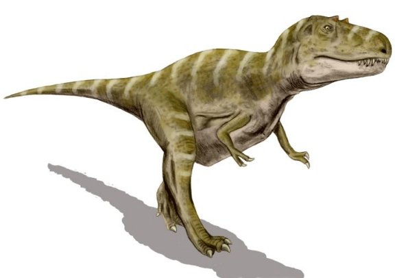 cannibalism and feeding habits of dinosaurs essay