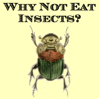 logo for Why Not Eat Insects?